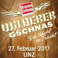 Wilderer Gschnas 2017