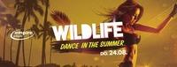 Wildlife - Dance in the Summer / empire