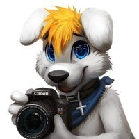 Userfoto von nikolass1